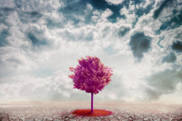 Resilienza mindfulness